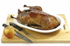 Roasted goose Stock Photos