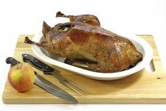 Roasted goose Stock Photos