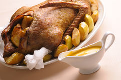 Roasted goose with apples Stock Photo