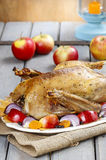 Roasted goose with apples and vegetables Stock Images