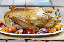 Roasted goose with apples and vegetables Stock Image