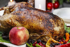 Roasted goose on the table Stock Images