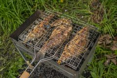 Roasted on grill fresh fish. Carp baked on BBQ.  royalty free stock images
