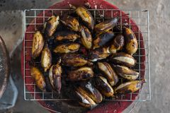 Roasted or Grilled Banana at Thai street food. Roasted or Grilled Banana for sale at Thai street food market or restaurant in Thailand stock photography