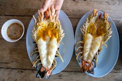 Roasted grilled giant river shrimp or prawn on blue plate, Thai style food at a Thailand restaurant. The Yummy Big river shrimp grilled on the table from stock photos