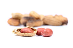 Roasted groundnuts Stock Photography