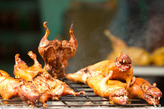 Roasted Guinea Pig. Also Called Cui Traditional Food In Ecuador Royalty Free Stock Images
