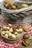 Roasted ha salato i dadi si mescola, spuntino dalla noce di macadamia, walnotes e almo Immagine Stock