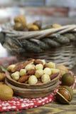 Roasted ha salato i dadi si mescola, spuntino dalla noce di macadamia, walnotes e almo Immagine Stock Libera da Diritti