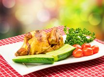 Roasted half chicken with tomatoes, cucumber and parsley on a white plate in BBQ picnic style against bright royalty free stock images