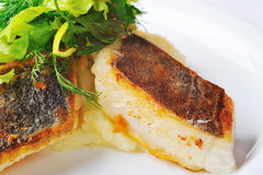 Roasted halibut Stock Photography