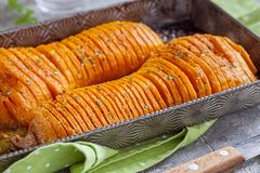 Roasted hasselback butternut squash pumpkin Royalty Free Stock Images