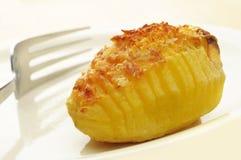 Roasted Hasselback potato Royalty Free Stock Photo