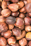 Roasted Hazelnuts Royalty Free Stock Image