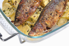 Roasted  herring Royalty Free Stock Images