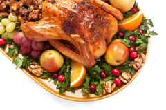 Roasted holiday stuffed turkey Stock Photos