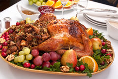 Roasted holiday turkey Stock Image