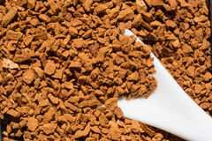 Roasted instant coffee powder Royalty Free Stock Photography