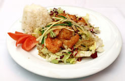 Roasted king shrimps with steamed rice close up Stock Photography