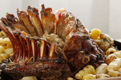 Roasted Lamb Stock Image