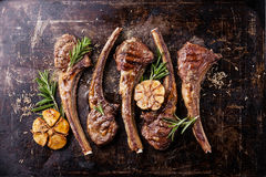 Roasted lamb ribs with spices and garlic Royalty Free Stock Images
