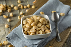 Roasted Macadamia Nuts with Sea Salt Stock Photography