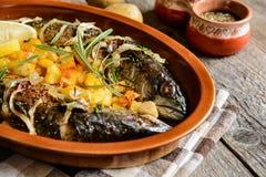 Roasted mackerel with vegetable garnish Royalty Free Stock Photo