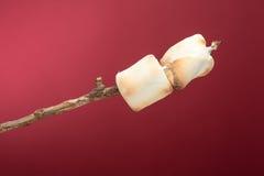 Roasted marshmallows on a stick Royalty Free Stock Photos