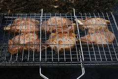 Roasted meat on the fire. Stock Photo