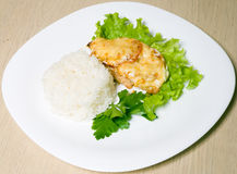 Roasted meat with rice and salad Stock Image