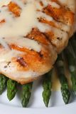 Roasted meat with sauce Hollandaise and asparagus macro Royalty Free Stock Photo