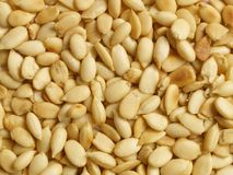 Roasted melon seeds Royalty Free Stock Image