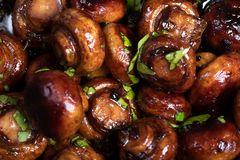 Roasted mushrooms with parsley. Close up of roasted mushrooms in balsamico sauce stock image