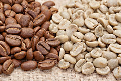 Roasted and  not roasted coffee beans on the sacking Stock Photography