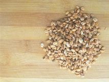 Roasted oat grain heap. Close up of roasted oat grain heap Stock Photography