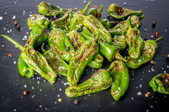 Roasted padron peppers Stock Images