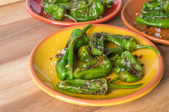 Roasted padron peppers Royalty Free Stock Image