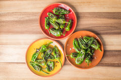 Roasted padron peppers. Grilled padron peppers with salt and pepper on colourful plates, top view Royalty Free Stock Photo