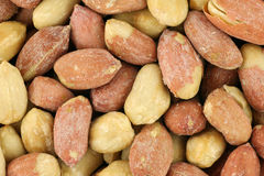 Roasted Peanut Seeds Royalty Free Stock Photos