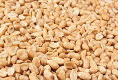 Roasted Peanuts Stock Images