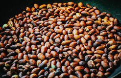 Roasted peanuts in a frying pan Royalty Free Stock Photography