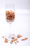 Roasted peanuts. Isolated with white background Royalty Free Stock Images