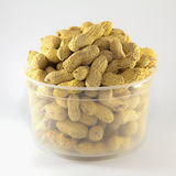 Roasted peanuts isolated in white plastic bowl Stock Images