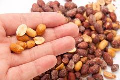 Roasted peanuts in the shell in the hand and the background Stock Image