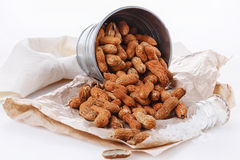 Roasted peanuts in shells on metal bucket Royalty Free Stock Image