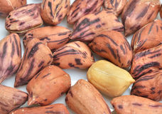 Roasted peanuts Stock Photos