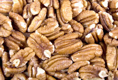 Roasted Pecans Stock Photography