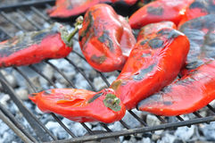 Roasted peppers. Close up of the roast red pepper on grill Royalty Free Stock Image