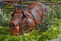 Roasted Pig. A roasted pig on a table Stock Image