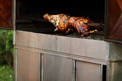 Roasted pig bakes for a dinner Stock Photography
